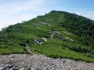 光岳からみた大井川源流部原生自然環境保全地域
