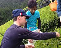 日本茶の伝道師 ブレケル オスカル Oscar Brekell