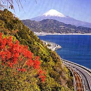 生まれ育った由比の町より富士山_300200