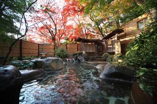 木洩れ日の湯