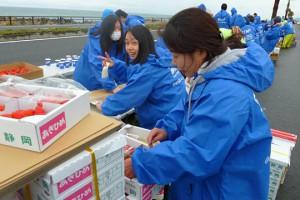 静岡マラソン2014にボランティアとして参加しました