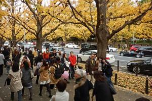 第6回「歩こう会」外苑、銀杏並木、青山を歩こう会 開催報告