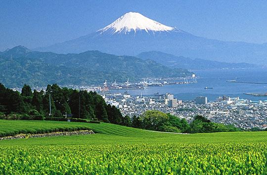 日本平(有度山)からの、清水-折戸湾-三保松原-駿河湾-伊豆半島-富士山という、世界有数のランドスケープとその自然