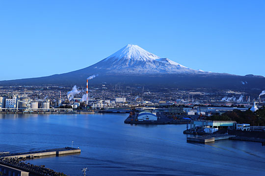 富士市協働事業(写真‗田子の浦みなと公園)